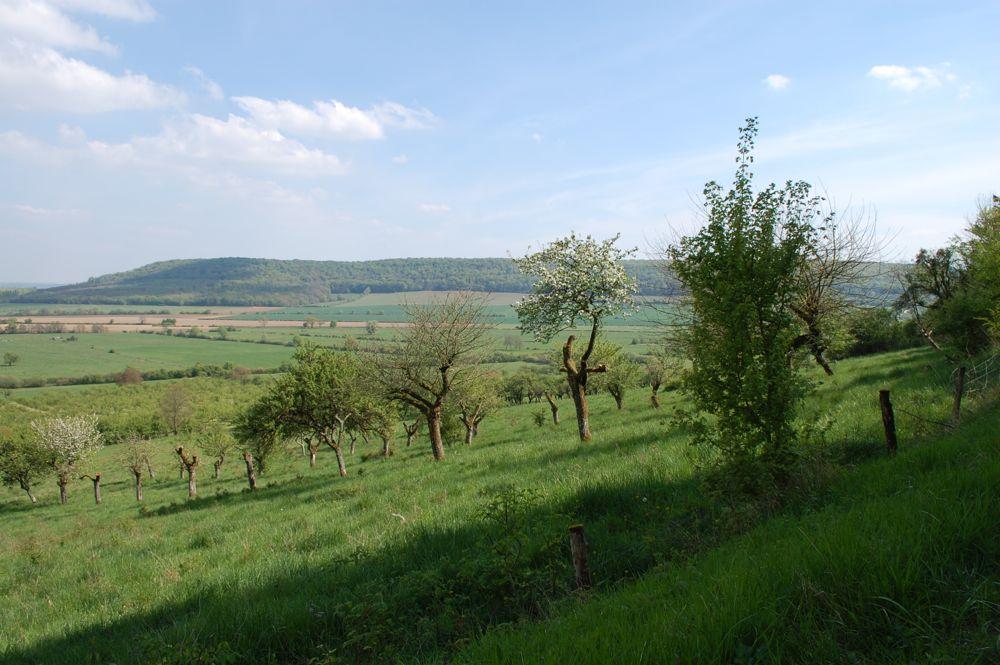 Landschap in de buur van Le Ciel Bleu
